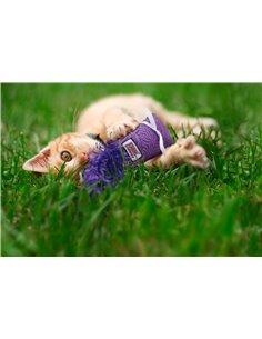 GIOCO GATTO KONG CAT KITTEN KICKEROO